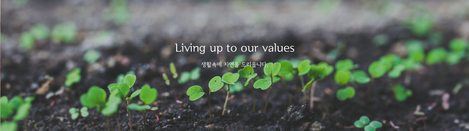 2. Living up to our values 생활속에 자연을 드리웁니다